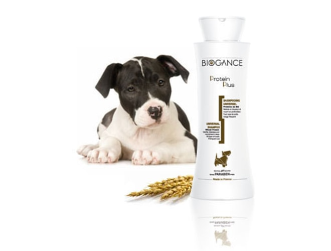 Biogance šampón Protein Plus 250ml